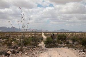 Deceptive desolation of El Camino del Diablo, photo provided by Butch Farabee.